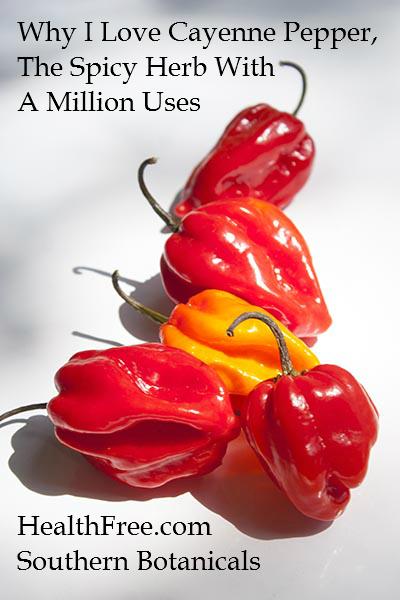 Why I love cayenne pepper-Southern Botanicals