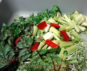 Vegetables ready to juice