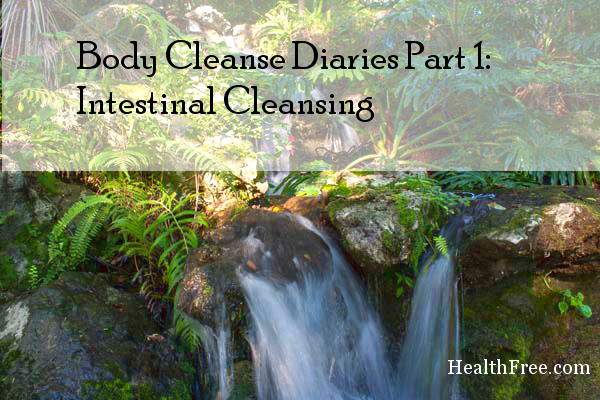 Body Cleanse Diaries Part 1 Intestinal Cleanse Intestinal Cleansing