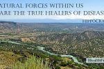 Natural forces within us are the true healers of disease. Hippocrates