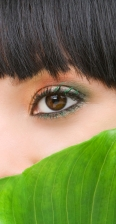 Eyes Behind Tropical Leaf