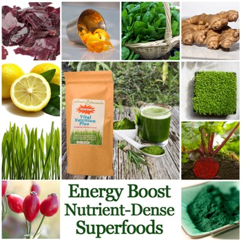 Vital Nutrition Plus superfood ingredients