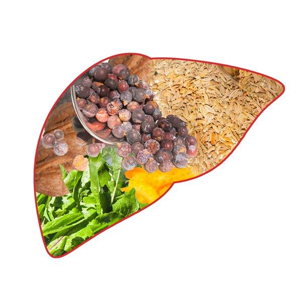 Liver filled with herbs