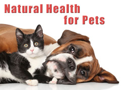 Pet Health Category