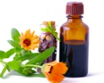 Echinacea Tincture and Flowers